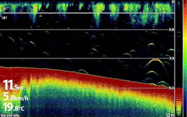 understanding-fish-finder-sonar-images